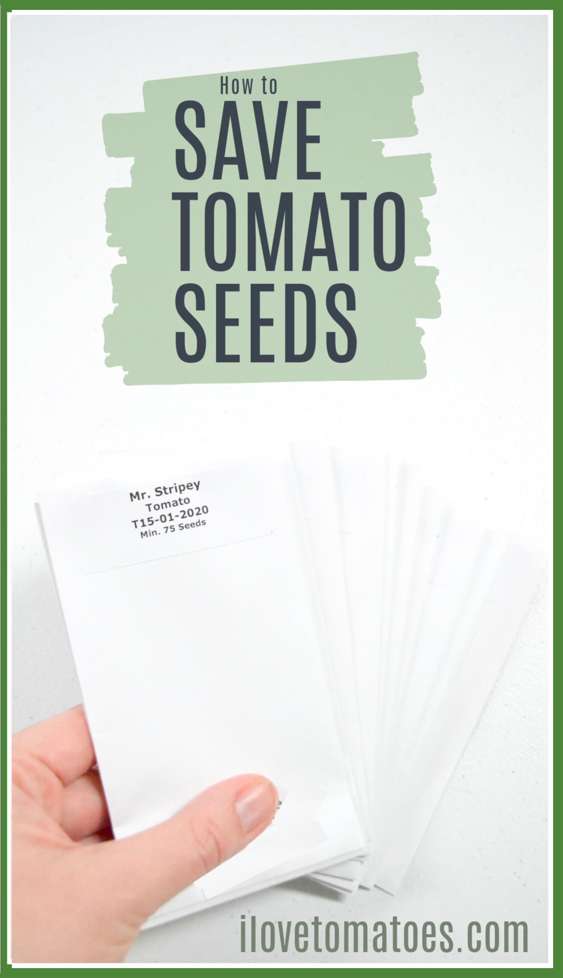how to save tomato seeds packets