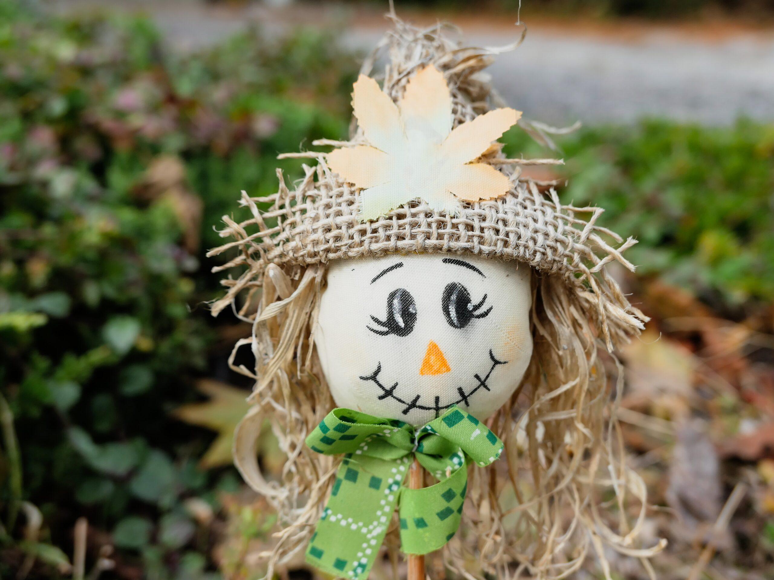 Unsplash garden scarecrow