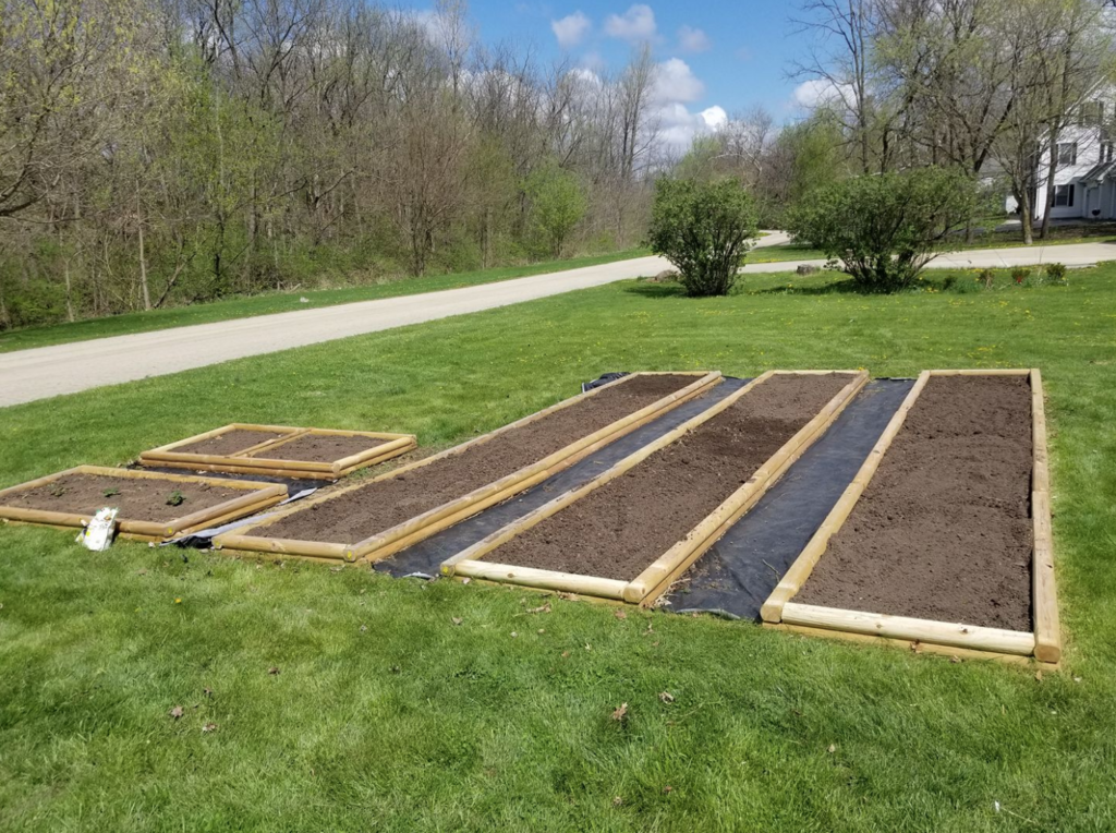raised garden bed stock